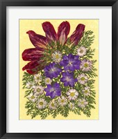 Framed Dried Flowers 35