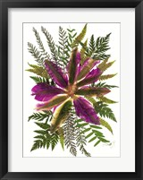 Framed Dried Flowers 40