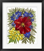 Framed Dried Flowers 41