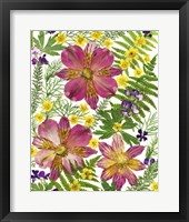 Framed Dried Flowers 45
