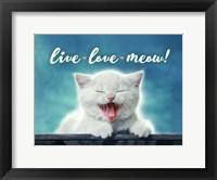 Framed Live Love Meow