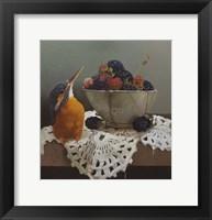 Framed Kingfisher