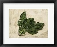 Framed Spinaci
