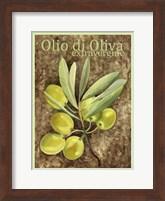 Framed Olio Di Oliva Extravergine