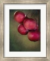 Framed Berries 1