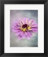 Framed Pink Bloom 2