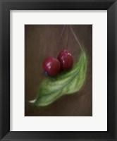 Framed Berries On Leaf
