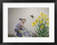 Framed Pika and a Bumblebee