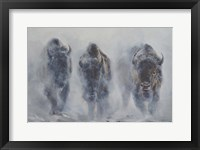 Framed Giants in the Mist