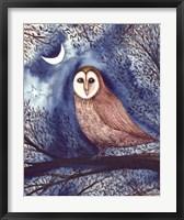 Framed Midnight Owl