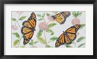 Framed Monarch Majesty