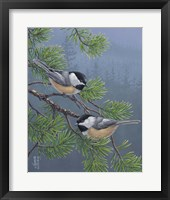 Framed Pine Tree Chatter