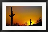 Framed Desert Sunset