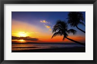 Framed Palm Trees Sunset