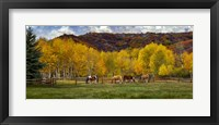 Framed Colorado Farm