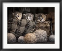 Framed Kittens In A Basket
