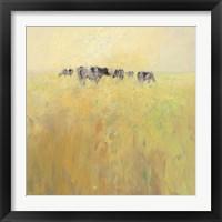 Framed Cows in Spring