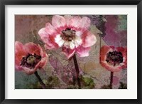 Framed Anemone Suite