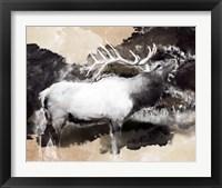 Framed Forest Elk Call
