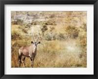 Framed Golden Savanna Antelope