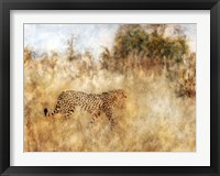 Framed Golden Savanna Cheetah