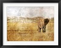 Framed Golden Savanna Elephant