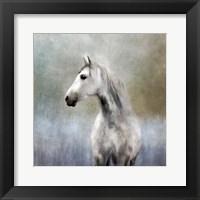 Framed Misty Grey Dappled Horse