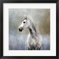 Framed Misty Grey Dappled Horse