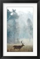 Framed Blue Twilight Forest Stag