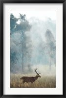 Framed Blue Twilight Forest Stag