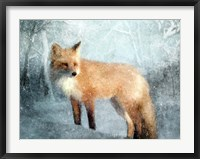 Framed Winter Fox in Falling Snow
