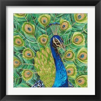 Framed Peacock