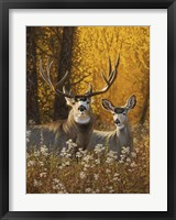 Framed Courting Autumn