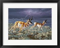 Framed Thunder and lightning