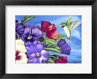 Framed Hummingbird and Pansies