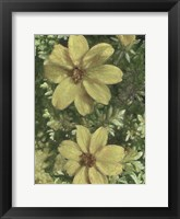 Framed Pair of Pretty Painted Petals