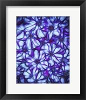 Framed Always A Flower