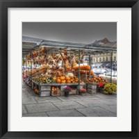 Framed Byward Market Pumpkins