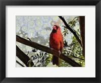 Framed Cardinal Knowledge