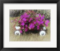 Framed Petunias To Go