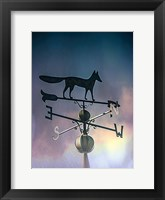 Framed Rain On The Old Fox Weather Vane