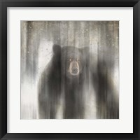 Framed Antique Wildlife bear