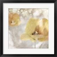 Framed Yellow Tulip 02