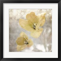 Framed Yellow Tulip 03