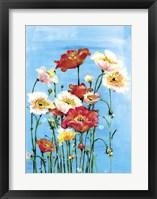Framed Poppies On Blue