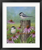 Framed Chickadees and Coneflowers