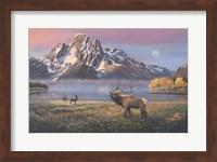 Framed Courting Mt Moran