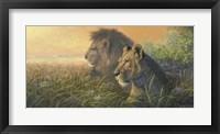 Framed Lion Queen