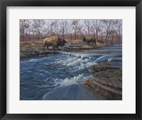 Framed Osage Watering Hole