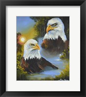Framed Mystic Eagles